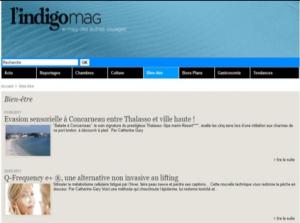 indigomag